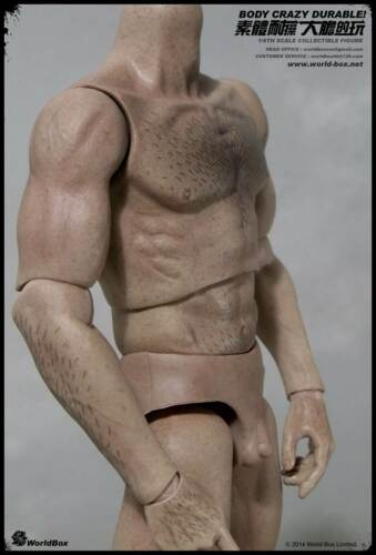 WorldBox 1//6 Scale muscular male figure Crazy Durable poilu corps USA en Stock