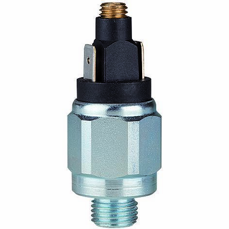 G 1//8 einstellb DS 4011 Riegler Pressostat Gew 0,3-2,0 Bar