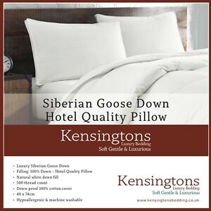 New Luxury 100 Pure Siberian Goose Down Pillows Hotel