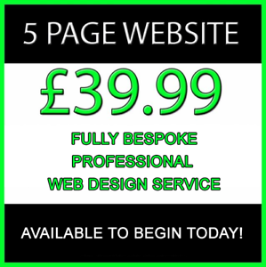 Website-Design-Up-to-5-Pages-Responsive-Mobile-Friendly-Professional