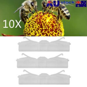 10X Baitable Reusable Hive Beetle Trap No Poison No Pesticides Beekeeping T