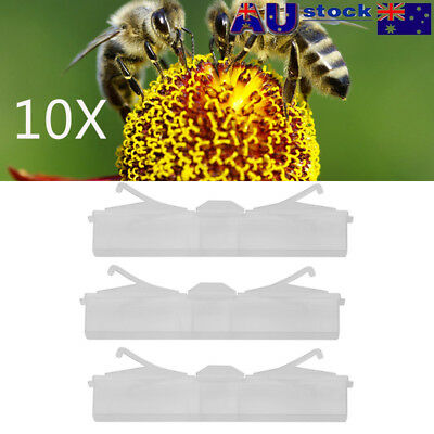 10X Hive Beetle Trap No Poison Pesticides Beekeeping Tool Baitable Reusable 1