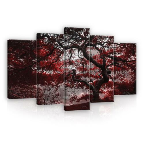 CANVAS Leinwand bilder XXL Baum Rot Natur Bild Wandbild F18793