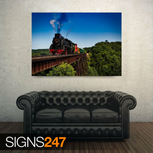 AMERICAN STEAM LOCOMOTIVE Poster Print Art A0 A1 A2 A3 AB013 TRAIN POSTER