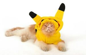 funny cats in clothes