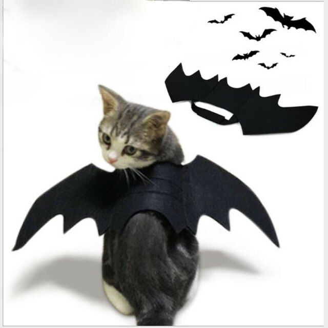 Cat Costume Halloween Bat Wings Pet Costumes Pet Apparel For Small Dogs And Cats