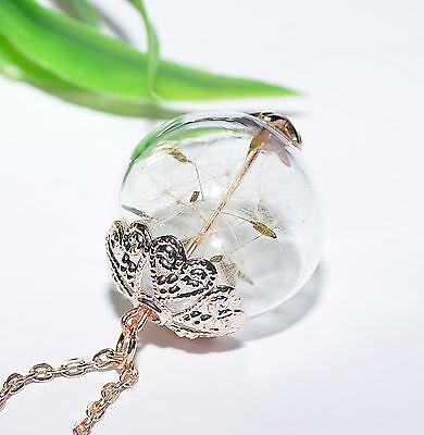 Pusteblume +++ Halskette Kette Anhänger ++ Pusteblumen Glaskugel Kugel rose gold