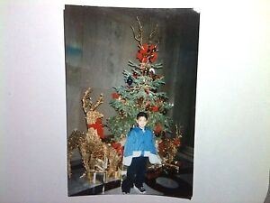 90s Christmas Tree.Details About Vintage 90s Photo Asian Boy W Christmas Tree Department Store Basketball Shoes