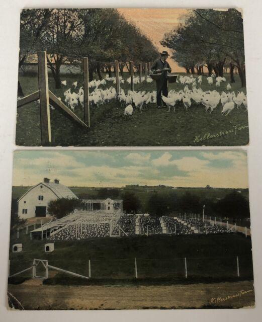 Kellerstrass Farm Postcards Kansas City MO 1912 Antique Missouri Farming