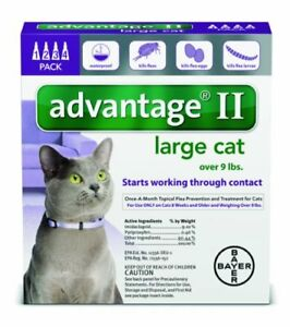 Advantage-II-Flea-prevention-Large-Cats-over-9-lbs-4-doses