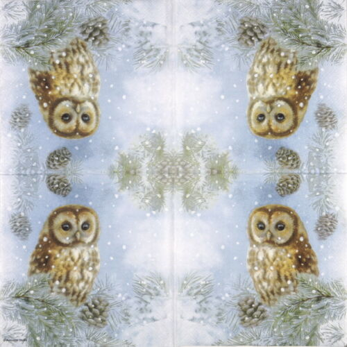 Decoupage Tawny Owl 20x Lunch Paper Napkins Serviettes Party