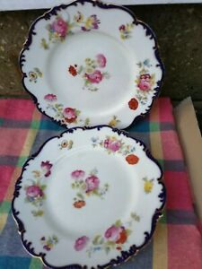 Couldon-Ltd-England-Plates-Beautiful-2-plates-for-your-collection
