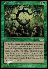 Serment des Druides PREMIUM / FOIL Judge Gift - Oath of Druids JG - Mtg magic