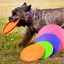 Silicone-Pet-Dog-Frisbee-Flying-Saucer-Disc-Toy-for-Exercise-Training-Toy-Soft thumbnail 1