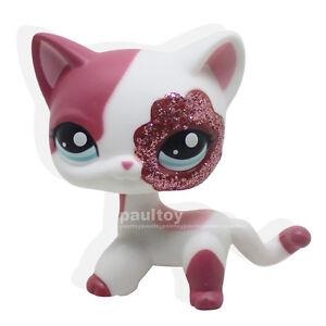 jouet chat sparkle