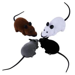 Katzen Spielzeug Elektrisch Ferngesteuerte Spielmaus Mäusejagd für Katzen Hunde DE Lieferung