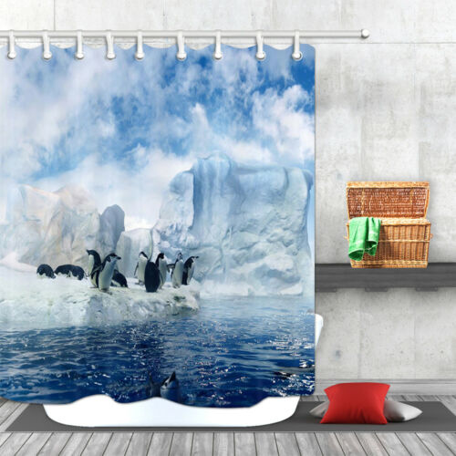 Animal Shower Curtain Penguin on the Glacier for Bathroom Waterproof Accessories