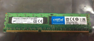 Crucial-CT8G3ERSLS4160B-8GB-DIMM-240-Pin-DDR3-Memory-Registered-ECC-DDR3-1600