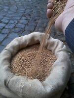 Weizen Futterweizen 25 Kg. Dhl Versand, Ernte 2016 Vogel-nagerfutter 0,55 € / Kg