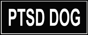 Pair-of-Patches-034-PTSD-DOG-034