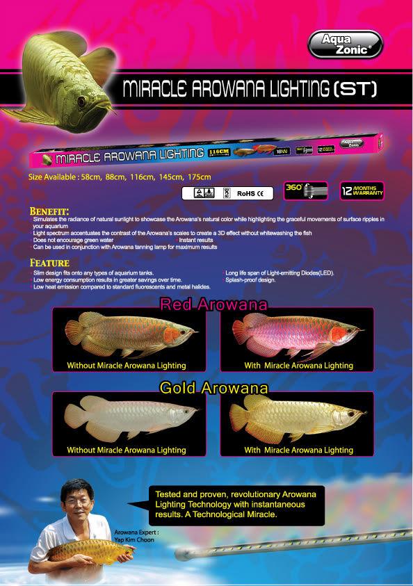 Aqua Zonic San Rosso Arowana Miracle Luce LED 88 cm 13.5 W NonSubmersible