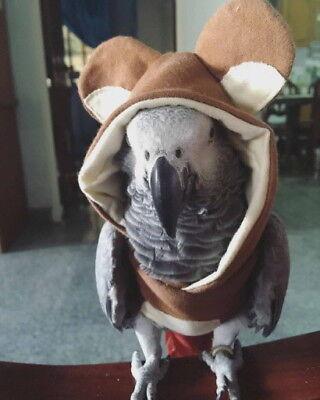 Parrot-Bird-Cockatiel-cockatoo-Parakeet-Macaw-Conure-hoodie bird cloths