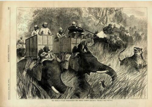 The Prince of Wales Tiger Shooting - The Critical Moment - 1876
