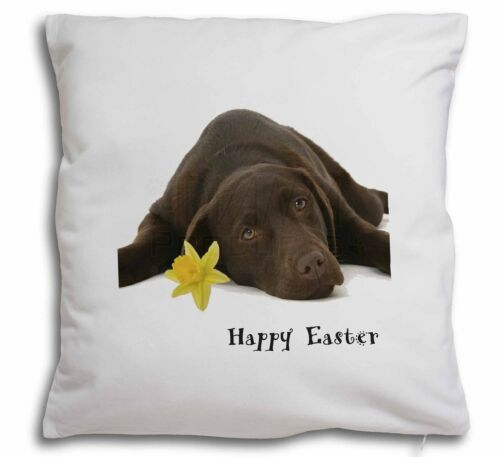 'Happy Easter' Chocolate Labrador Soft Velvet Feel Cushion Cover , ADL54DA1CPW