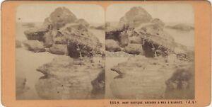 Biarritz Pont Rustico Foto J.Andrieu Stereo Vintage Albumina Ca 1870