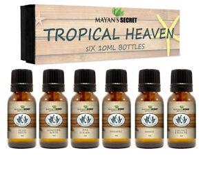 Premium-Grade-Fragrance-Oil-Tropical-Heaven-Gift-Set-6-10ml