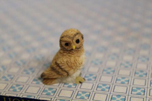 Dolls House = Owl