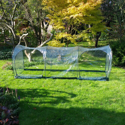 3m L x 1m W x 1m H Clear Vegetable Fruit Vegetable Polytunnel Grow Tunnel