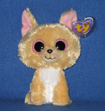 Ty Nacho Beanie Boo Boos The Mexican Chihuahua Dog 6