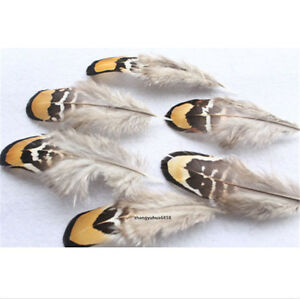 Wholesale 20/50 PCS beautiful natural pheasant feathers 2-4 inches / 5-10 cm