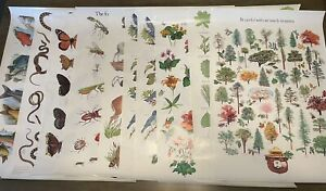 vintage Lot of 10, 1980s SMOKEY THE BEAR Posters Educational Trees Fish Bugs ++