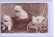 """VINTAGE CATS KITTENS REAL PHOTO """"BABY'S PRAMS"""" POSTCARD POSTMARKED 1906"""