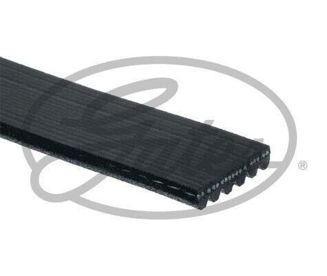 6PK1488 GATES v-cinghie scanalate Si Adatta Mitsubishi ASX 2010-2011