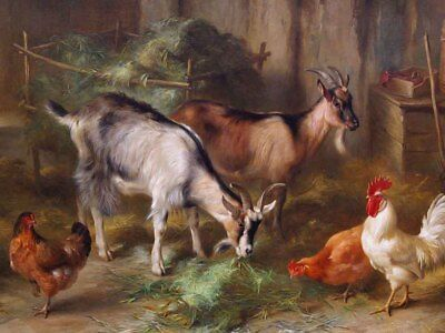 Home Art Wall Decor Cattle and hens Oil Painting Picture Printed On Canvas