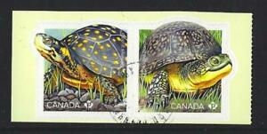 CANADA-2019-ENDANGERED-TURTLES-SELF-ADHESIVE-PAIR-FINE-USED