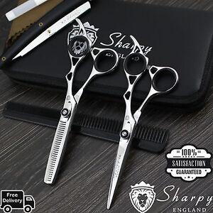Professional-Salon-Hair-Cutting-Thinning-Scissors-Barber-Shears-Hairdressing-Set