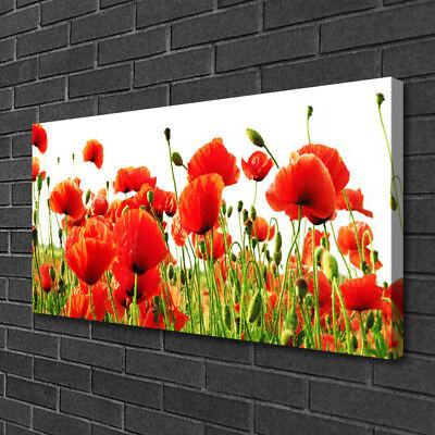 Leinwand-Bilder 100x50 Wandbild Canvas Kunstdruck Blumen Natur