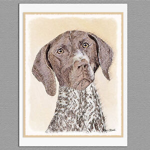 6-German-Shorthaired-Pointer-Blank-Art-Note-Greeting-Cards
