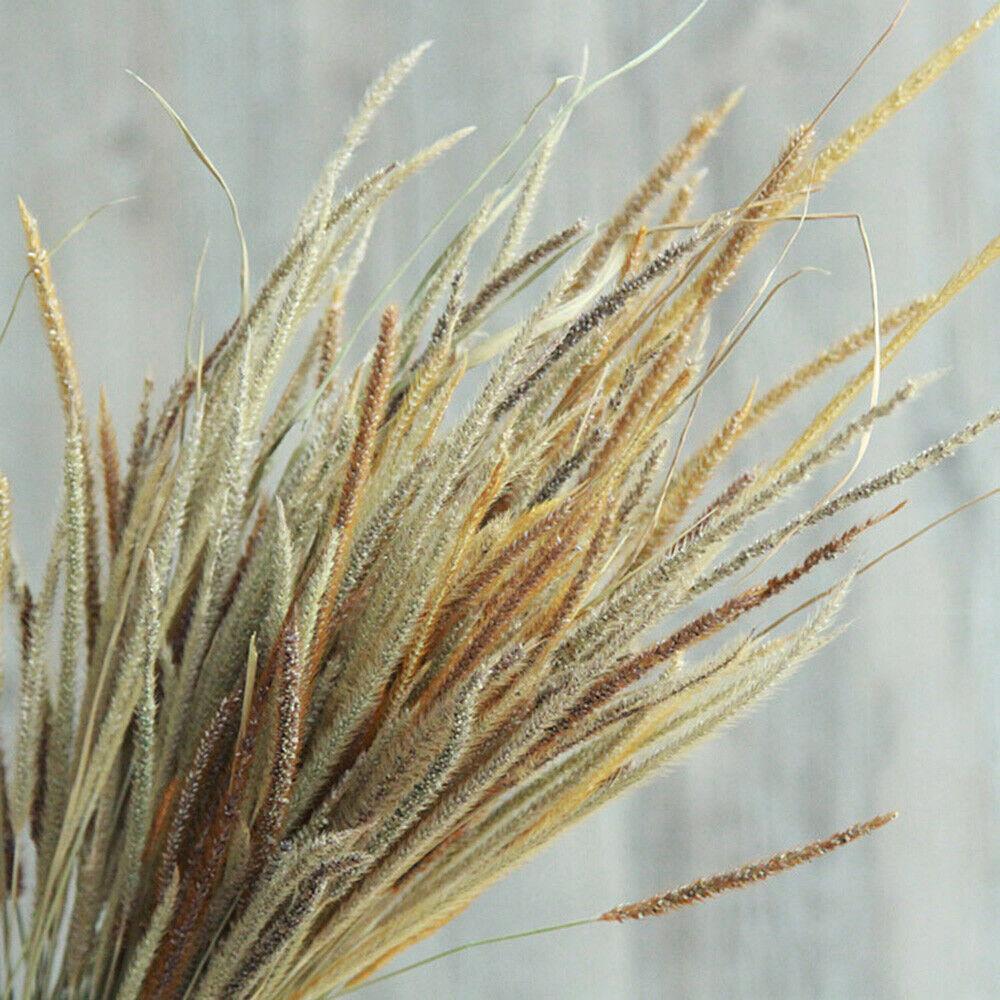 50Pcs Natural Dried Thousand Grass Reed Home Wedding Flower Bunch Bouquet Decor