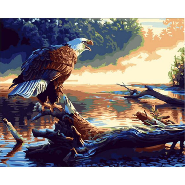 Buy Paint By Number Kit Eagle Birds Draw Diy Picture Artwork 40x50cm