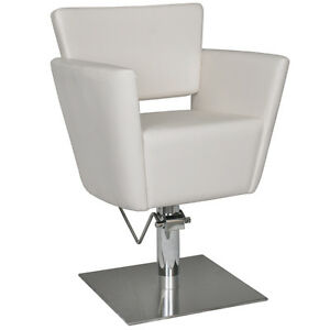 details about salon hair equipment hydrualic styling chair sc 04be
