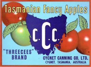 SALE-Vintage-Tasmania-Apple-Case-Labels-Fruit-Art-Poster-034-bakers-dozen-C-034-13