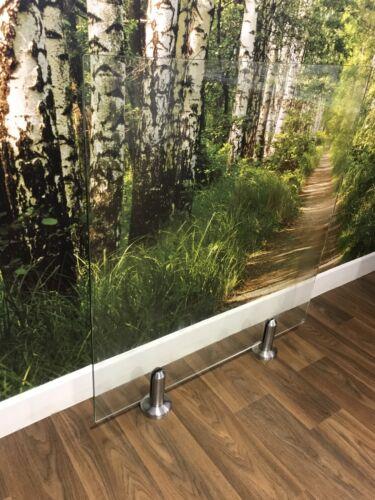 PLANCHERS Piscines Acier Inoxydable Robinet sans cadre verre clôture de jardin-patios