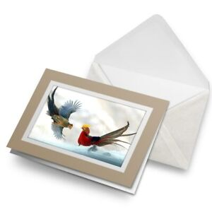 Greetings-Card-Biege-Golden-Pheasant-Mating-Dance-Birds-16215