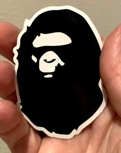 Darwin Ape to man Evolution Wing Chun Martial Arts Sticker