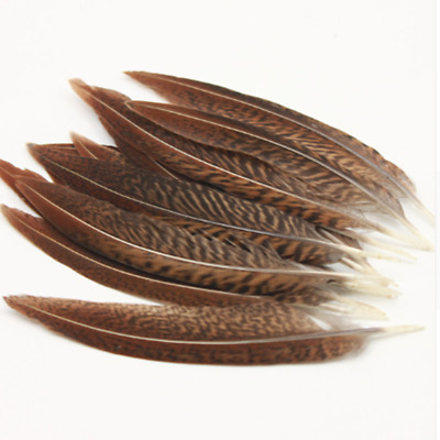 Wholesale 5-200pcs beautiful natural pheasant tail feathers 25-100cm //10-40inch